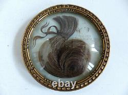 ANTIQUE RELIQUARY SENTIMENTAL MOURNING HAIR ART dated 1878 1914
