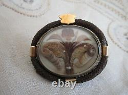 Victorian Hair Art Mourning Hair Floral Seed Pearl Accent 14K Trim Pin Brooch